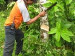 Preventif Yantek Maja