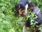 Putting Beliung Muncang_0042